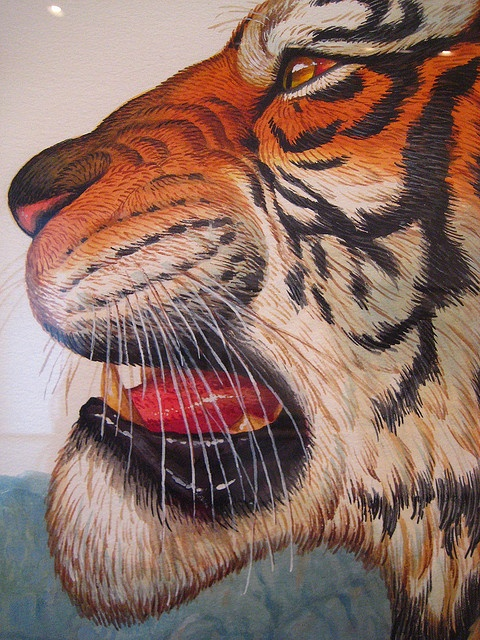 specific artist Walton Ford-- detail-- Tiger