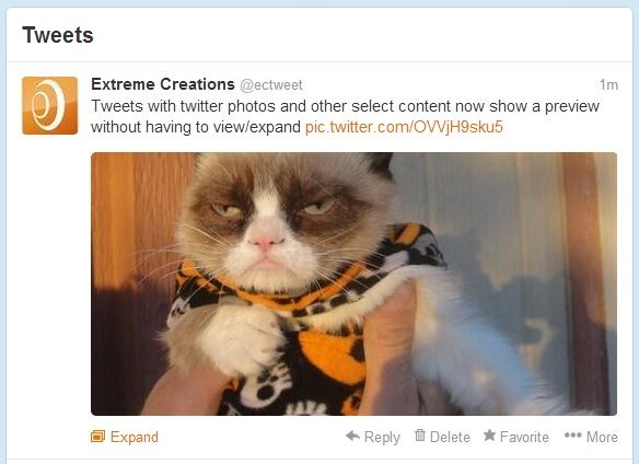 Picture this: Twitter Adds In-Timeline Images - http://swelldomains.com/picture-this-twitter-adds-in-timeline-images/