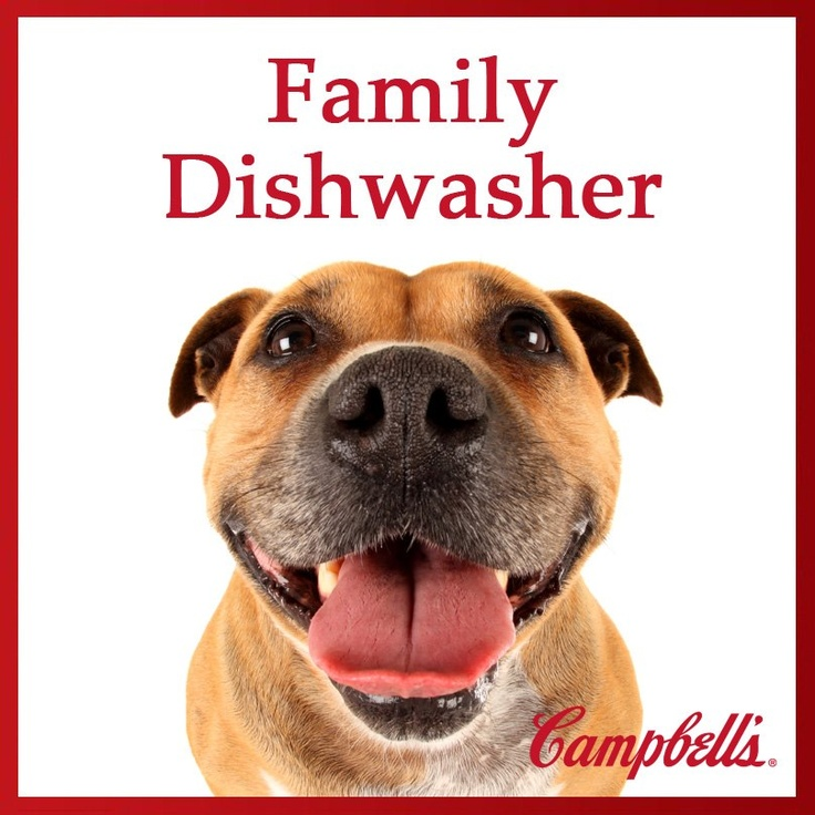 213 best campbells soup images on pinterest soups soup for Best dog boarding dc