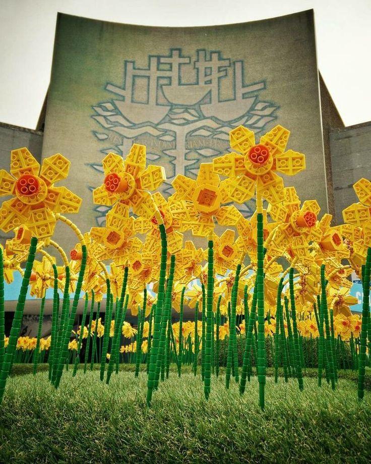 Lego Daffodils