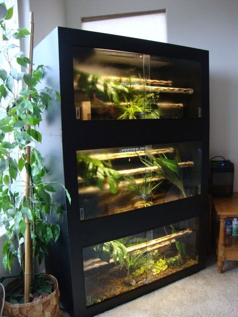 stacked reptile enclosure, just need to make sure its escape proof