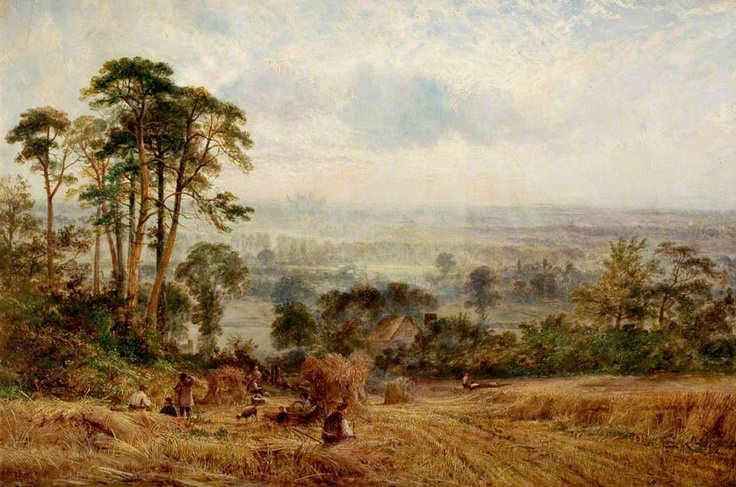 Cornfields, Wollaton Hall, Nottingham  by Benjamin Shipham