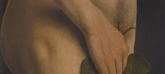An intimate detail of Adam, but it shows the beautiful details by Van Eyck. The little hairs, the veins in the hands and the little wrinkles of the skin. Detail from the Ghent Altarpiece (1432).