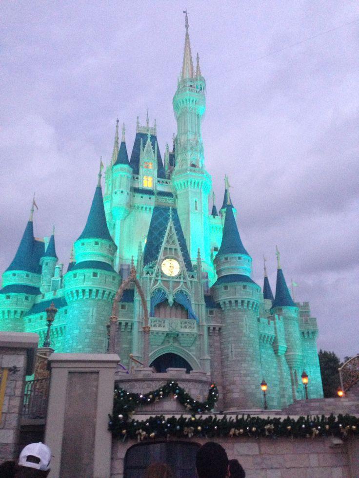 The Cinderella Castle at night! #waltdisneyworld