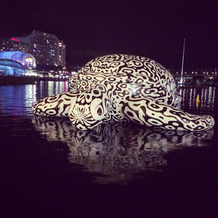 Giant #turtle @ #darlingharbour
