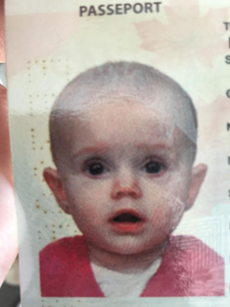 My wife thinks our daughters passport looks like Kevin Mccallister. I don't see it.
