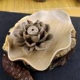 cerámica recipiente de incienso regalo quemador de incienso de loto cerámica gruesa