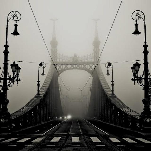 Fog - Liberty Bridge - Budapest, Hungary
