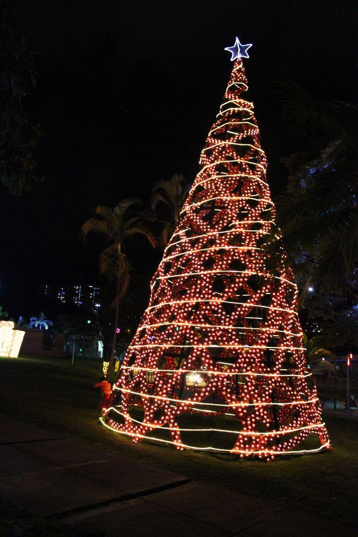 Árbol de navidad en Ditaires