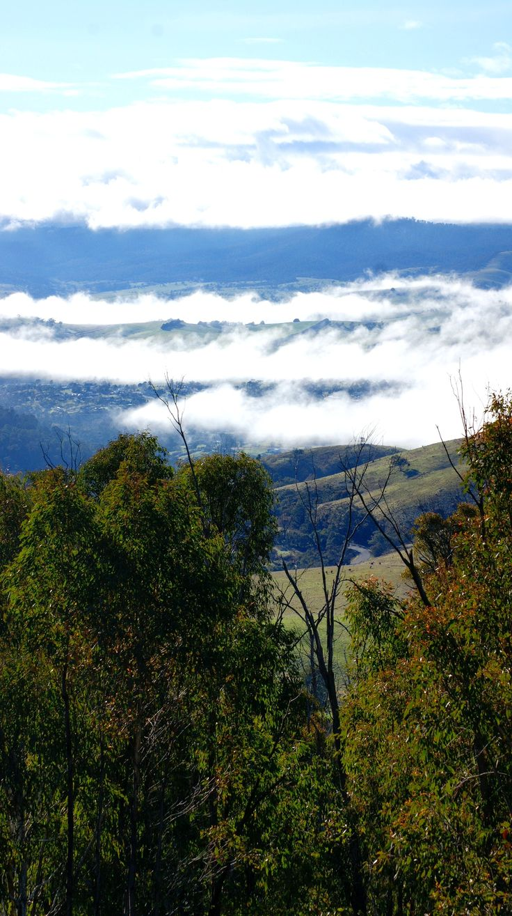 Omeo coverd with a blanket of cloud. East Gippsland - Australia. Photo by Carin