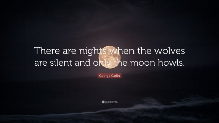 Image result for moon phrases