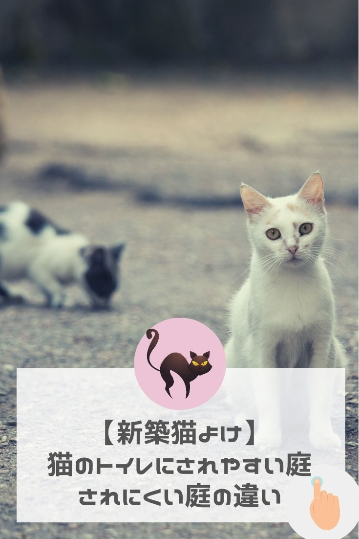 新築の猫よけ 庭に猫の糞が トイレにされやすい庭とされにくい庭の3つの違い 猫 トイレ 猫 庭