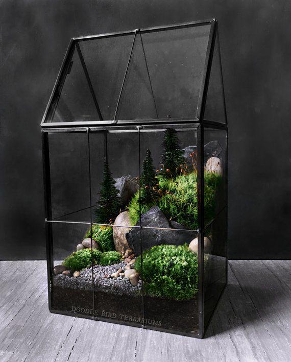 Large Greenhouse Moss Terrarium With Landscape Scene In Geometric