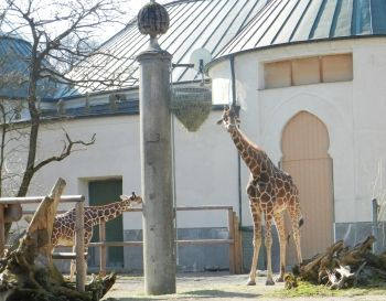 Leipzig Zoo Gutschein  Perfect Leipzig Zoo Gutschein With