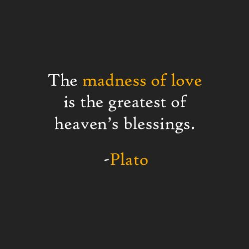 Plato, quotes, love, madness of love