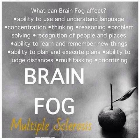 Brain Fog & how it effects you