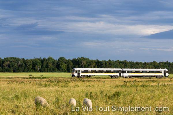 Navette ferroviaire de Charlevoix - - #ViréeQC Découverte de Charlevoix par le Train du Massif - Détails sur www.lavietoutsimplement.com