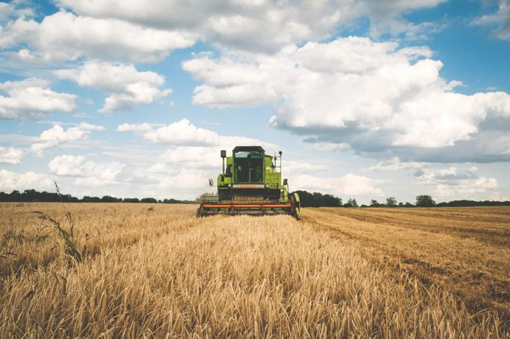 Check out this free photoGreen Tractor     https://avopix.com/photo/32840-green-tractor    #field #wheat #cereal #agriculture #land #avopix #free #photos #public #domain