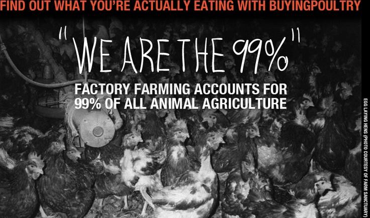 Helping Farm Forward