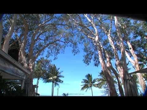 Palm Cove Queensland Resorts