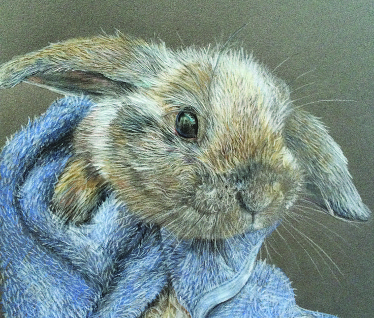 Luxury  uBunny in a towel u by Lisa Wellwood Polychromo pencils on canson paper