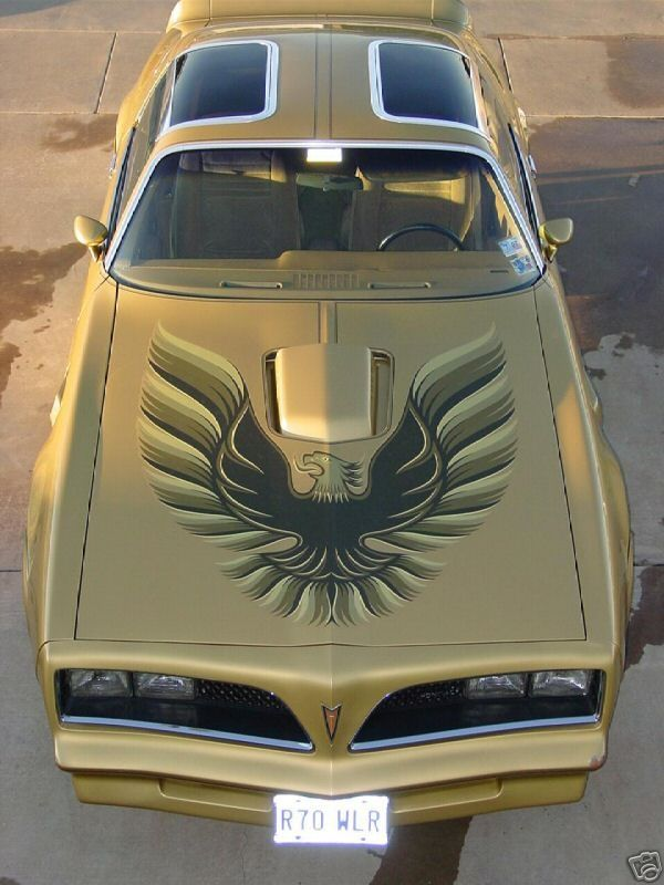 1977 Pontiac Trans-Am (with '79 Eagle decal)