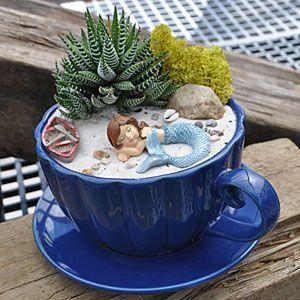 Miniature Teacup Garden                                                                                                                                                                                 More
