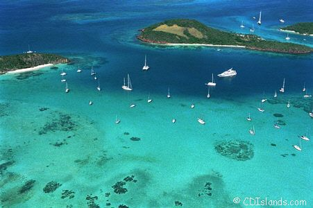 Tobago Cays near Union island. It doesn't get any better.