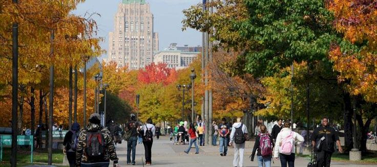 Wayne State University, let's get started!
