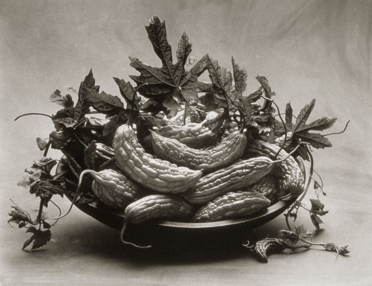 Bitter Melon ©Cy DeCosse Fine Art Photography. The Beauty of Food Collection. Limited edition platinum-palladium print. CyDeCosse.com #photography #art #food