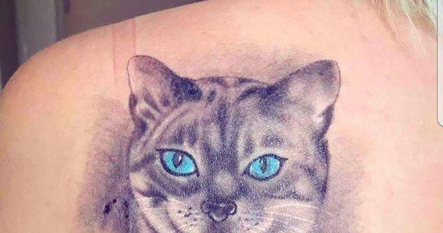 Desain Baju Kucing