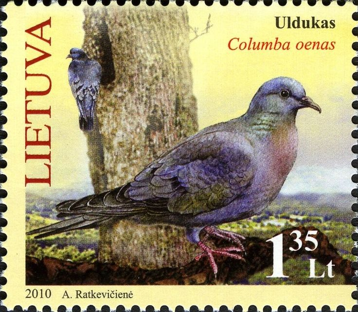 Stamp: Stock Dove (Columbia oenas) (Lithuania) (The Red Book of Lithuania. Forest Flora and Fauna) Mi:LT 1047,Sg:LT 1010