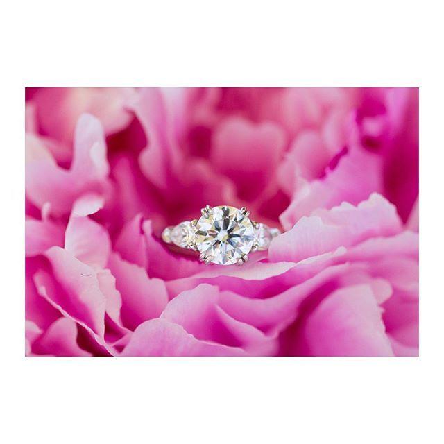 * Engagement Ring☆ * 大好きなハワイのブーケの中で♡ 最初は大きすぎるかな?と思ったけど、人間贅沢なものでお店の方の言う通り、だんだんしっくり慣れてきました。笑 放っておくと曇ってしまうので、最近はちょくちょく自分でもお手入れしてるクラシックリングちゃん。 ずっと輝いていてほしいです^^ * #HarryWinston #classicring #engagementring #ハリーウィンストン #婚約指輪
