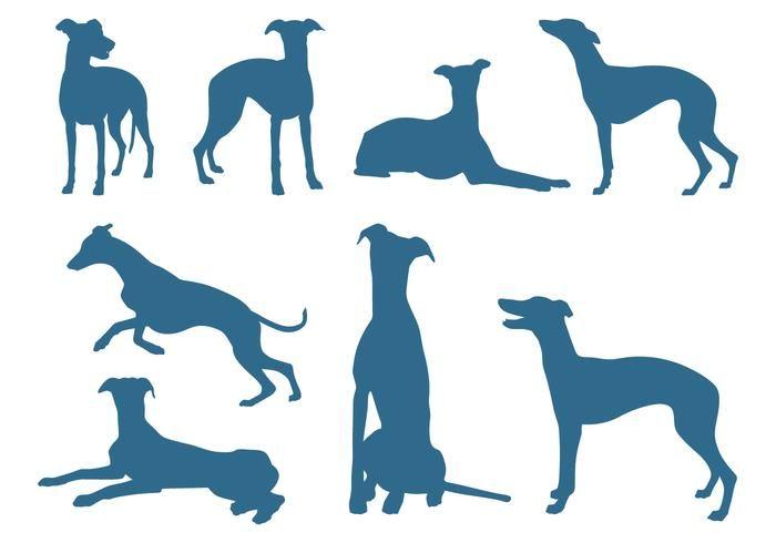 Resultado de imagen para dibujo de perro galgo corriendo
