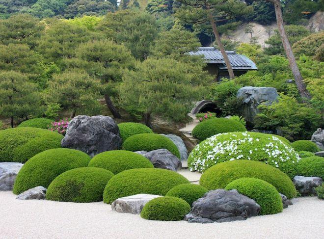 Озелененный различной растительностью японский сад камней.