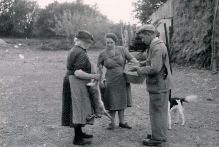 La saison de la chasse - Les paysans, photos archives - L'Internaute Actualite
