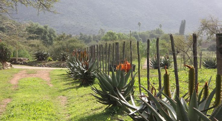 Bed and Breakfast Montana Guest Farm, Oudtshoorn, South Africa - Booking.com