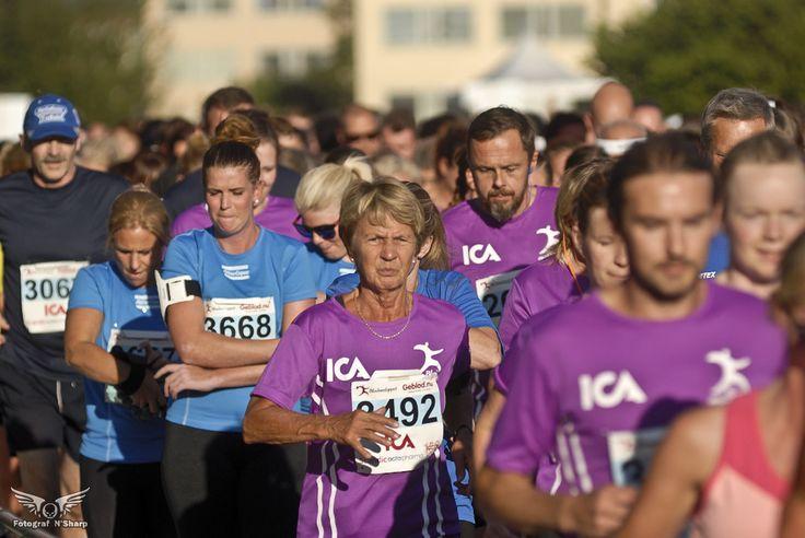 Blodomloppet - årets viktigaste lopp i Örebro