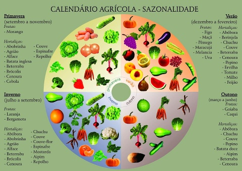 Calendário agricola - sazonalidade