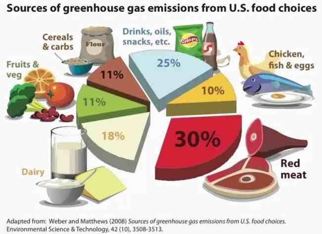 factors influencing fast food consumption pdf
