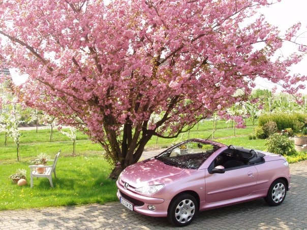 pink Peugeot 206CC convertible,  I love my pretty Mademoiselle !