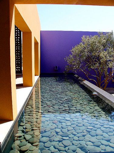 Purple wall, summer, exteriour, water, blue, zen, silence, peace, pool, vacation, orange