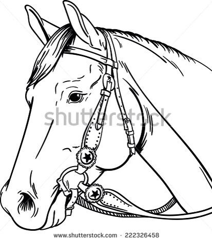 coloring pages of a horse head - 17 best images about color by number on pinterest