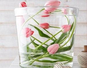 mooie tulpen vaas voor het voorjaar = Houtelement   Activate the Woodelement in your house with flowers = easy Feng Shui  - An Sterken - Feng Shui Expert - www.fengshuiandmore.be