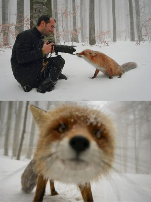 When interacting with wild life the experience is by far the greater treasure than just the photograph you snap... <3!