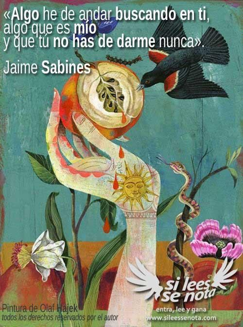 #sabines #poesia #quotes #frases #citas #sileessenota