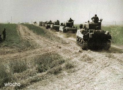 Polish Shermans 1st AD