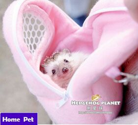 African Hedgehog Hamster Breathable Pet dog Carrier Bags Handbags Puppy Cat Travel Backpack prevent urine bag Drop Shipping M53-in Dog Carriers from Home & Garden on Aliexpress.com | Alibaba Group