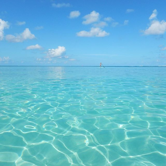 【marina0922mths】さんのInstagramをピンしています。 《Heaven・・・ ・ こんなにもクリアな海をみたことがなかったので、大興奮でした🐠✨ ・ #CaymanIslands #🇰🇾 #CarribeanOcean #awesome#beautiful#blue#ocean#lovelydays#summervacation#heaven#clear#amazing#greatsummer#nofilter ・ #ケイマン諸島#海外旅行#景色#空#海#夏休み#旅行#クルージング#カリブ海#綺麗#船旅#大満喫#天国#透明感#日焼け》