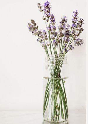 Tischdekoration - Lavendel -